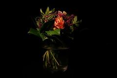 IMG_9616 (humansalad99) Tags: flowers stillife