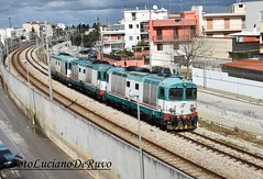 D445-1103-1036-1138 (luciano.deruvo) Tags: d445
