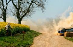 """Sortie de route au rallye """"Terre de l'Auxerrois"""" (jjcordier) Tags: accident terre sortie rallye photographe colza tonneau auxerrois"""