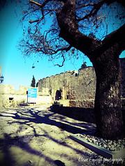 castle of knights , Rhodes (braziliana13) Tags: shadow tree castle place outdoor greece knights historical rodos rhodes greekisland ελλάδα κάστρο greekhistory castleofknights ρόδοσ ιπποτών