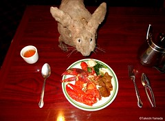 Dr. Takeshi Yamada and Seara (Coney Island sea rabbit) at the East Ocean Chinese Buffet in Brooklyn, NY on January 29, 2016. This is their favorite Chinese restaurant in New York.  20160129Fri DSCN3818=0020C1 (searabbits23) Tags: nyc ny newyork sexy celebrity art fashion animal brooklyn painting asian coneyisland japanese star tv google king artist dragon god manhattan wildlife famous gothic goth chinese performance pop taxidermy cnn tuxedo bikini portraiture tophat unitednations playboy entertainer takeshi samurai genius donaldtrump mermaid amc johnnydepp mardigras salvadordali unicorn billclinton hillaryclinton billgates aol vangogh curiosities sideshow jeffkoons globalwarming takashimurakami pablopicasso steampunk yamada damienhirst cryptozoology freakshow barackobama seara immortalized takeshiyamada museumofworldwonders roguetaxidermy searabbit ladygaga climategate