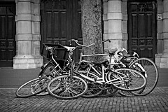 Inge Hoogendoorn (ingehoogendoorn) Tags: blackandwhite bicycle zwartwit bikes denhaag bicycles blacknwhite thehague fietsen fiets sadbikes bikepile dutchbikes bikewrecks