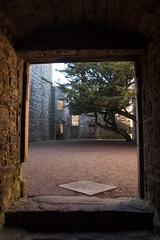 Craigmillar Castle (17) (Bill Cumming) Tags: castle scotland edinburgh ruin historicscotland 2016 craigmillar
