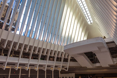 Oculus WTC (Visual Thinking (by Terry McKenna)) Tags: wtc oculus