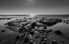 Coastal Backlight 2 (bjorbrei) Tags: ocean sea water norway rock backlight coast rocks shore hvaler viker brattestø