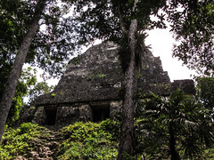 "Tikal: l'autre face du Temple des Inscriptions <a style=""margin-left:10px; font-size:0.8em;"" href=""http://www.flickr.com/photos/127723101@N04/25637849683/"" target=""_blank"">@flickr</a>"