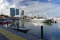 Port w Miami | Miami port