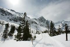 Dolina Zeleneho plesa (Juro Kovacik) Tags: winter snow mountains landscape dolina tatry taras zlenepleso
