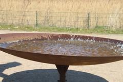 Wasserkunst Elbinsel Kaltehofe
