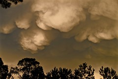 Mammatus Clouds - Storm is Coming! Bluffton SC (Meridith112) Tags: summer cloud storm sc silhouette clouds nikon southcarolina august thunderstorm storms thunderstorms mammatus lowcountry bluffton carolinas 2015 mammatusclouds nikon80400 nikond610