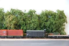 2016_03_28_Valkenveld Trees_41 (dmq images) Tags: railroad scale layout model railway 187 modelleisenbahn schaal modelspoor h0 valkenveld