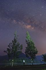UpRise (nadzli.azlan7) Tags: nightphotography trees sky selfportrait nature stars landscape star landscapes malaysia mothernature kedah starrynight milkyway naturelovers sik artofnature beris