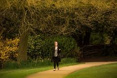candid walk..... (dtapkir) Tags: uk light england people woman tree green london colors sunshine yellow lady contrast garden gold nikon stranger d750 80400