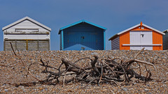 Driftwood and Beach Huts (Janet - West Sussex) Tags: driftwood beachhuts