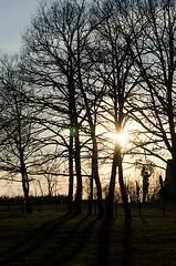 Coucher de soleil, Aveyron, Midi-Pyrnes (lyli12) Tags: nature landscape soleil nikon ciel paysage arbre couleur coucherdesoleil aveyron midipyrnes d7000