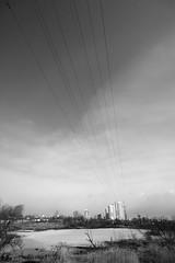 _MG_4683 (zlobinevgenii) Tags: street city bw skyline canon walking sigma horizont sigma1020  wideahgel