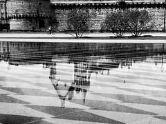 inversion2 (SoizigMal) Tags: city reflection water eau chateau reflets nantes ville