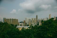 DSC03411 (yanchenwushu) Tags: hongkong center kungfu wushu shaolin gongfu songshan