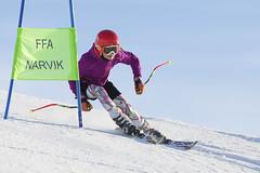 focused eyes (J-A Pettersen) Tags: winter ski skiing narvik narvikfjellet