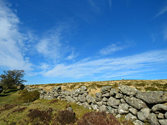 On The Tilt! ('cosmicgirl1960' NEW CANON CAMERA) Tags: blue sky white green stone clouds devon moors bracken walls dartmoor yabbadabbadoo