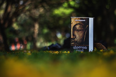 (Premnath Thirumalaisamy) Tags: reading book bangalore happiness author budda tamil innerpeace cubbonpark soothing calmness sra bhudda sramakrishnan itseasybeingabuddha