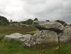 Les alignements de Carnac (stefff13) Tags: pierre carnac menhir alignements