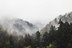winter is coming (spikeROCK) Tags: nature canon exploring slovensko orava slovakia priroda slovak juro 70d kupculak
