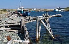 A sheltered bay (Starkrusher) Tags: newfoundland atlanticocean northatlantic hugewaves newfoundandlabrador oceanfishingboats