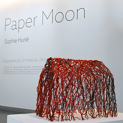 Paper Moon 05 (Bibliothque universitaire d'Angers) Tags: university library sophie bibliothque bu bua angers huri galerie5 universiaire