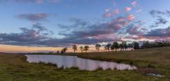 Luskintyre Sunset. (williams.darrell53) Tags: light sunset cloud sun tree water field rural canon landscape williams australia lagoon darrell samyang