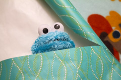 Night-night, Cookie (quinn.anya) Tags: christmas eyes toddler doll gift sesamestreet present cookiemonster wrappingpaper