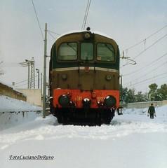 D341 2033 (luciano.deruvo) Tags: trenomerci d3412033
