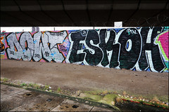 Dowt / Eskoh (Alex Ellison) Tags: urban graffiti boobs graff westlondon dfn dowt dowta eskoh