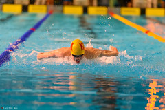 DSC_2325_290116_1918 (Kristiansand svmmeallianse) Tags: swimming swim skagerrak kristiansand ksa aquaram skagerrakswim2016