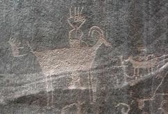 Petroglyphs / Capitol Reef National Park (Ron Wolf) Tags: archaeology utah nationalpark fremont nativeamerican petroglyph anthropology rockart capitolreefnationalpark zoomorph bighornsheep anthropomorph pleasantcreek anthromorph