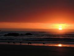 27 (aliceinwondershit) Tags: family sea summer beach familia de mar los meer playa verano punta cousin region pacifico choros cuarta