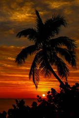 Hutchinson Island Sunrise #4 (tclaud2002) Tags: morning sky usa sun seascape tree nature sunrise landscape outside outdoors dawn florida lagoon palm palmtree tropical indianriver seagrapes jensenbeach hutchinsonisland indianriversidepark