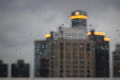 035 / 365 (Tara Gadwell) Tags: city building rain skyscraper droplets gloomy detroit downtowndetroit gmbuilding 365project 365challenge 365daychallenge 365dayproject
