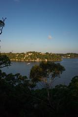 Early Evening (bigboysdad) Tags: landscape landscapes au 28mm australia newsouthwales gr ricoh oatley