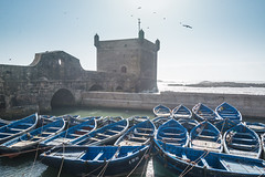 Essaouira - The famous blue fisher boats (Thomas G. from U.) Tags: africa blue harbour morocco maroc maghreb fortifications essaouira marokko mogador fisherboat almaghrib kingdomofmorocco northwestafrica  mogadore   thewesternkingdom asawra taurt harbourfortifications almamlakahalmaghribiyah regionofwesternnorthafrica marrakeshsafi  313047n94611w
