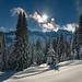 Winter im Oberallgäu
