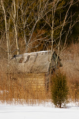 Abandoned Farm Shed (Adam Turow) Tags: old winter snow building abandoned rural forest landscape woods farm country rustic shed scene deserted abandonedfarm ruralnj