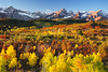 Dallas Divide (jeanineleech) Tags: morning autumn trees usa mountain snow southwest fall field landscape rockies colorado colorful outdoor sunny bluesky foliage aspens telluride moutains 2011 dallasdivide uncompahgrenationalforest