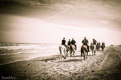 -003813_ (trinrn7) Tags: people horse beach gr ricoh padreisland