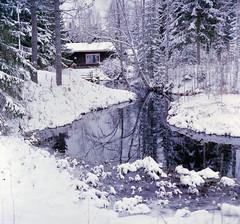 (HolmisticWalker) Tags: winter reflection film december fujisuperia400 epsonv550