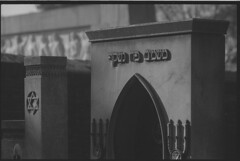 Sephardic Jewish cemetery, Belgrade (veljko.vujcic) Tags: film monument cemetery grave analog 35mm dof olympus iso jewish 100 pan asa ilford om1 jewishstar davidstar