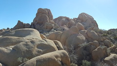 More huge granite rock outcroppings in Joshua Tree NP