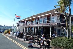 Plymouth-201506-39-ChandlersPubRestaurant (Tony J Gilbert) Tags: macro marine underwater plymouth diving scylla jameseaganlayne nikond300 handdeeps wwwdivingplymouthcom ceeking hilseapointrocks