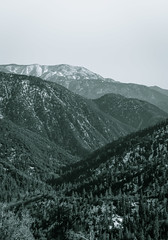 Big Bear (vaneebs) Tags: bear wild blackandwhite bw white mountain black mountains nature monochrome landscape big hike wilderness