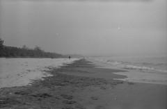 Baltic Sea (Lukas Samulak) Tags: winter friends sea people bw seagulls love car blackwhite poland baltic analogue gdansk poznan